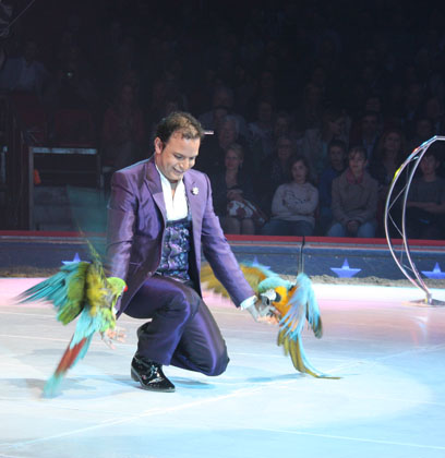 Alessio Fochesato with his beautiful parrots