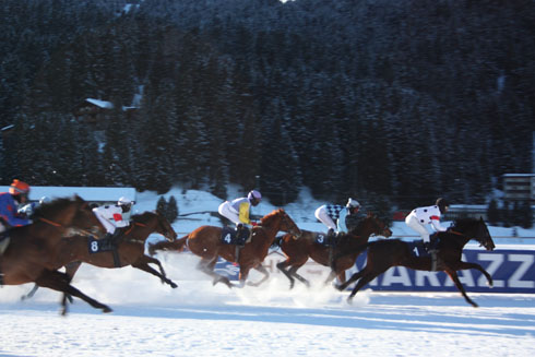 Arosa Horse Race, Switzerland