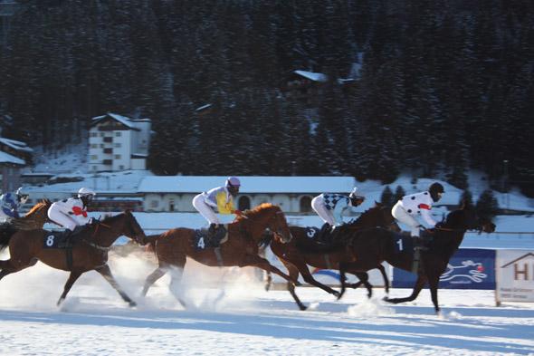 Arosa Horse Race