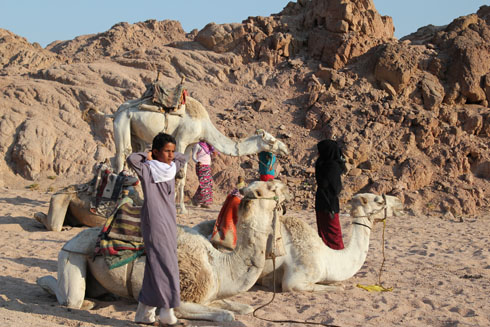Bedouin children in the Sinai desert after a camel ride