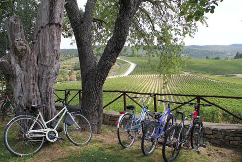 Bikes at the farmhouse Romitorio di Serelle, Chianti
