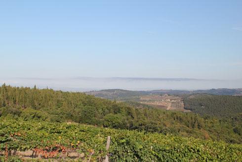 Early morning scenery  in the Chianti region, Tuscany