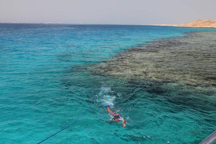 Egypt - Snorkling day in Ras Mohammed, Sinai