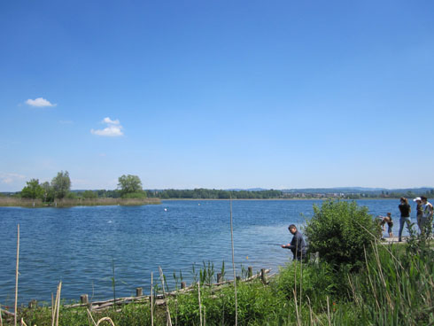 Fishing at the Greifensee in Switzerland