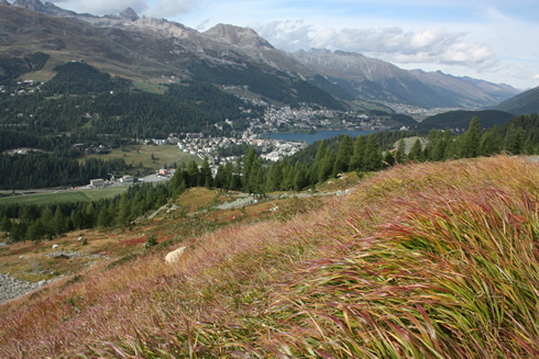 View of St Moritz in the distance