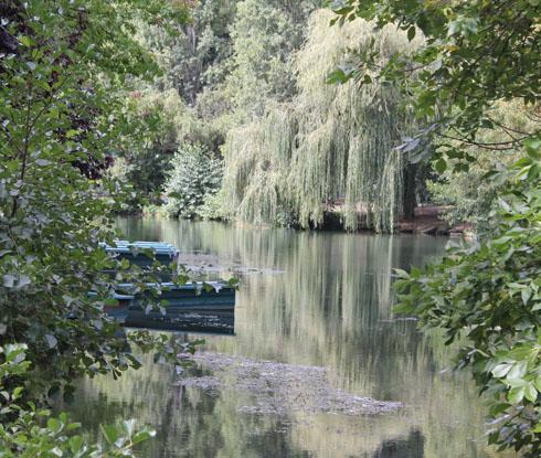 Enjoying the morning along the river Clain, St Benoit
