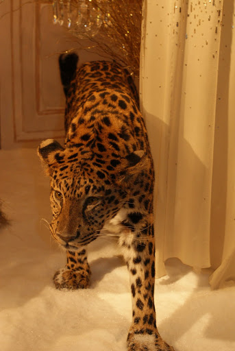Leopard at the Dior stand, Le Printemps store in Paris