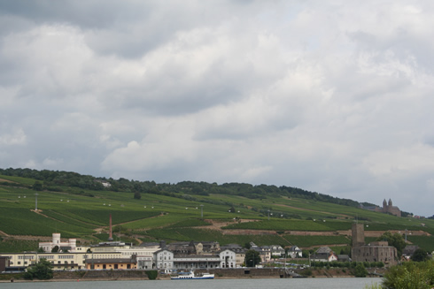 Rhine River and vineyards near Rüdesheim