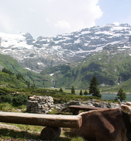 A place to barbecue in Trubsee, Engelberg