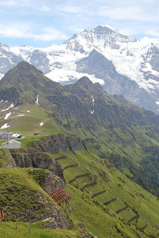 View from Männlichen top