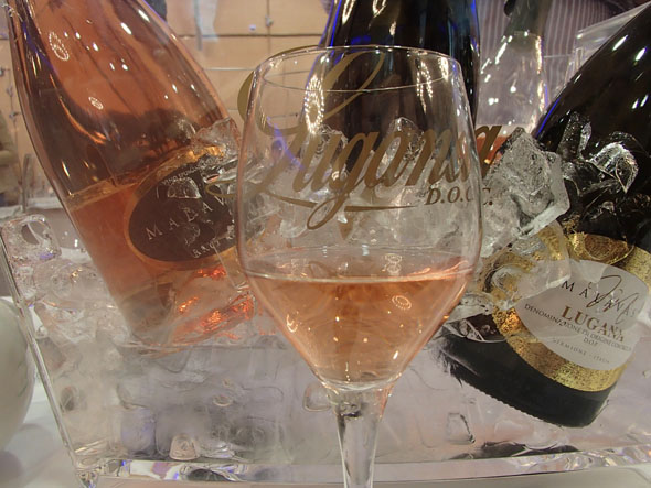 Wines and Prosecco from the Malavasi winery