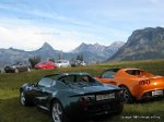 Lotus in alpine field