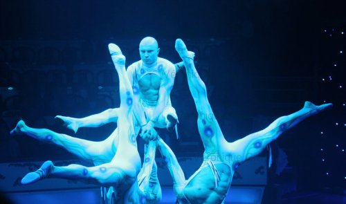 sea-world-acrobats-at-the-conelli-circus