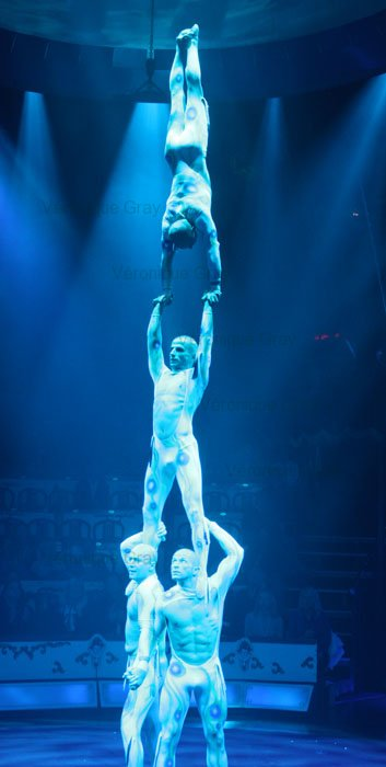 sea-world-acrobats