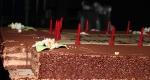 dress-rehersal-art-on-ice-dionne-bromfield-birthday-cake